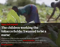 The children working the tobacco fields: 'I wanted to b