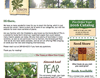 E-Newsletter: Oikos Tree Crops, Perennial Food Nursery