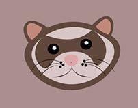 Ferret infographic