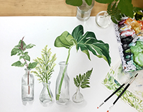 Botanical Watercolour Paintings