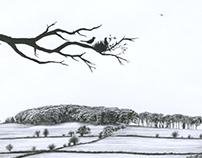 'Bellair Hill - A New Star' - Pencil Sketch