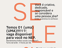cartazes aleatórios NEP