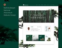 BDNA Web Design