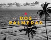Dos Palmeras Group