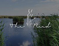 THE REED