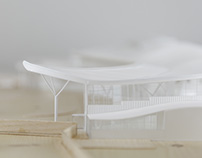 Liverpool South Parkway Presentation Model