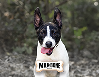 Milk-Bone® Dog Biscuits