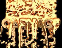 Carnage - Rare Concert Visuals