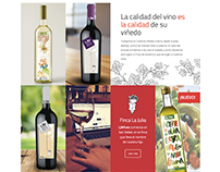 LJW Vinos & Viñedos – Rediseño web y otras piezas