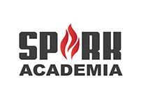 Spark Academia