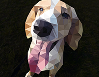 Dog in Polygonal Effect