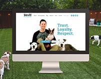 BDB - Website
