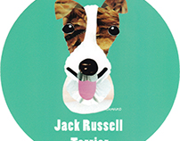 029 | Jack Russell Terrier (rough)