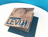Birth card for Levi