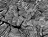 Contours and Illusions - Chinese Ink