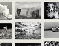 Collections on www.CanvasOnDemand.com