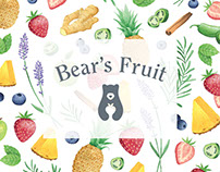 Illustration & Pattern for Bear's Fruit