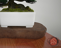 Bonsai Mania Project