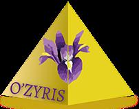 Logo et Carte de Visite - Fleuriste