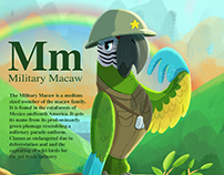 M is for Military Macaw
