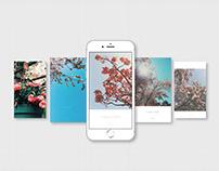 Primavera a Milano | Instagram Stories | Photography