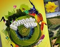 A3 Bifold Brochure - Fundação Neotrópica do Brasil