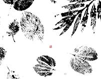 LHN Studio // Branding, Namecard