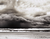 Black storm - Blackography XXI