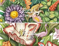 联想|植物商业插画