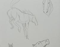 Sketchbook horse