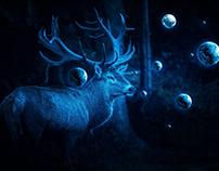 Deer Cosmos