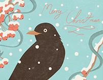 Christmas Cards 2015
