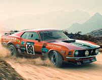 Rally Mustang