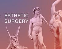 Дизайн сайта Esthetic Surgery