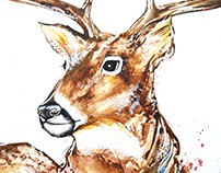 Deer Composition - Custom Painting