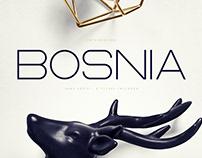 Bosnia - Sans Serif font - 2 styles   Free Download