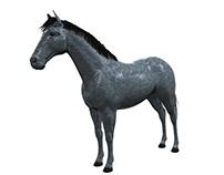 Horse materials