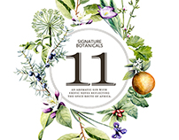 Botanical Illustrations for Musgrave Gin