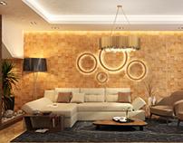 Residential modern villa project