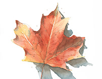 watercolor fall leaf painting