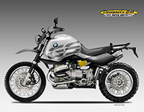 BMW R 1150 GS GREY GOOSE