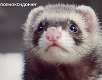 Polyoxidonium - The Ferret (TVC Campaign)