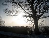 Snow, Mist, Fog & Frost