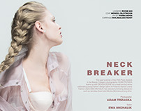 Neck Breaker