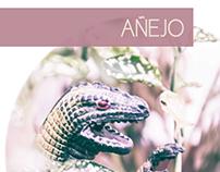 Añejo . flyer