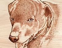 woodburned pet portrait