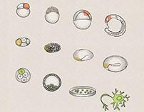 Developmental Biology Cover Art