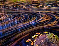 Art nature photography ideas