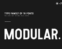 MODULAR-16 WEIGHT.