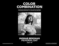 Color Combination Inspiration - Instagram Post
